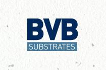 BVB Euroveen